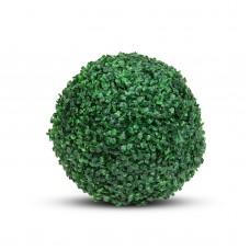 Garden of Eden - Cimişir, dimensiune Extra, Ø 37 cm