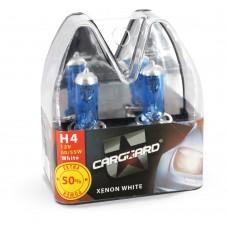 Set de 2 becuri halogen H4 - 60/55W
