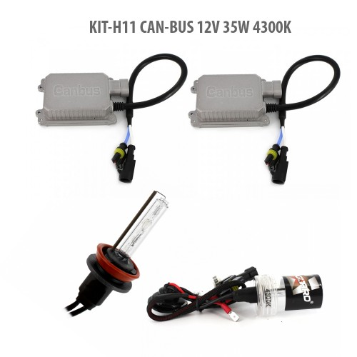 H11 CAN-BUS 12V 35W 4300K