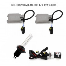 HB4(9006) CAN-BUS 12V 35W 4300K